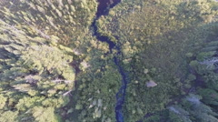 Straight down aerial view of lake forest, stream, bog Stock Footage