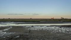 4K Moonrise Time lapse, at Ria Formosa wetlands natural park Stock Footage