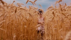 Little Girl Goes Forward in Wheat Stock Footage