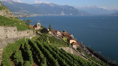 Terraced vineyards in Switzerland Stock Footage