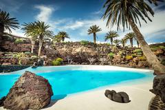 Jameos del Agua pool, Lanzarote - stock photo