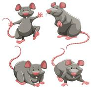 Gray rat in different poses - stock illustration