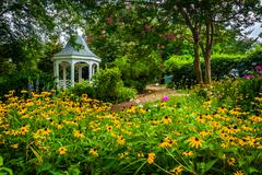 Colorful garden and gazebo in a park in Alexandria, Virginia. Stock Photos