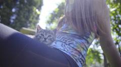 Kitten resting on woman lap low angle 4K Stock Footage