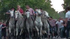 Owners of a herd of bulls on horseback for the feast traditional of the Gypsies Stock Footage