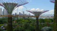 4K, Singapore, park Gardens by the Bay with it's famous supertrees. - stock footage