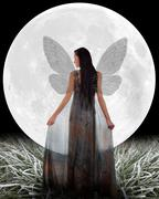 Fairy in front of a Moon. Stock Photos