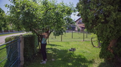 Young woman picking apples from tree Stock Footage