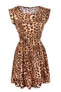 Animal print dress Stock Photos