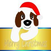 Saint Bernard dog wishing Merry Christmas Stock Photos