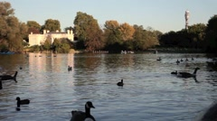 Regents Park Boating Lake, London Stock Footage