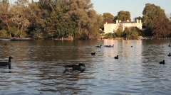 Regents Park Boating Lake, London Stock Footage