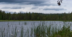 Lake with surrounding moor and northern forest landscape, timelapse Stock Footage