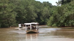 Boat In jungle river Stock Footage