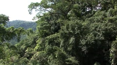 Costa Rica Forest Cable Car Stock Footage