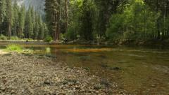 Merced River, Yosemite National Park Stock Footage