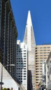 Transamerica Pyramid in San Francisco downtown - stock photo
