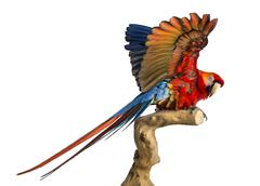 Scarlet Macaw (4 years old) perched on a branch and flapping its wings, isolated - stock photo