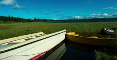 Anchored rowboats floating on swell, green read, blue sly, time lapse, Norway Stock Footage