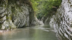 Canyon River Khost. Yew-tree grove. Sochi, Russia. 1280x720 Stock Footage