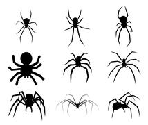 Set of black silhouette spider icon isolated on white background - stock illustration