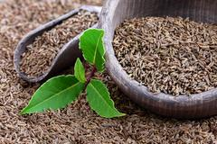 Bay leaves with caraway seeds Stock Photos