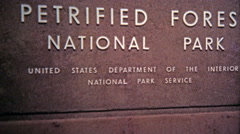 1972: Petrified Forest National Park tree fossils and geological formations. Stock Footage