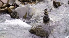 Flowing small stream with Zen stone Stock Footage