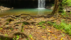 Tropical Waterfall Stock Footage