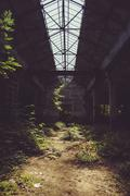 Abandoned factory and vegetation - stock photo