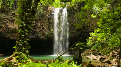 Artsy Shot Walking Through the Jungle Looking at a Big Powerfull Waterfall - stock footage