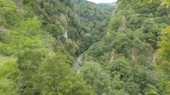 River Valley of Khost. Yew-tree grove. Sochi, Russia. 1280x720 Stock Footage