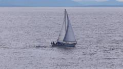 Sailboat Passing Shore - 02 Stock Footage