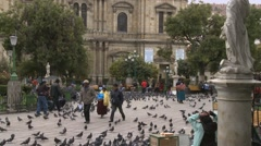 Pigeons in Murillo Square in La Paz, Bolivia (3) Stock Footage