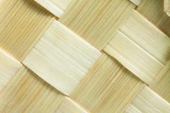 wattled straw - stock photo