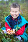 Small cute boy gathering cloudberries on the forest marsh Stock Photos