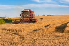 Harvesting barley in August Stock Photos