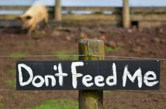 Do not feed me sign on pig pen Stock Photos