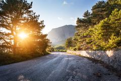 Asphalt road in summer forest at sunset. Crimean mountains Stock Photos