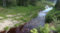 Harz mountain range glade with river Oder spring water HD Footage