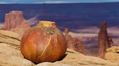 Canyonlands National Park Islands In The Sky Panning Epic View With Gourd - stock footage