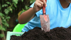 HD footage close up Child Hands Planting a young tree in Ground Stock Footage