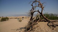 Death Valley Sand Dunes 01 Mesquite Flat Dunes Desert Tourists Circa Stock Footage