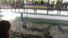 Crocodile Wrestling at Zoo in Bangkok - stock footage