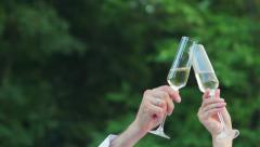 Bride and groom clink glasses. Husband and wife holding glasses of champagne. - stock footage