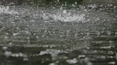 Raindrops knock the puddles. Heavy rain. Stock Footage