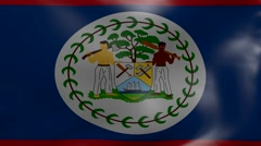 belize strong wind flag - stock footage