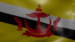 brunei strong wind flag - stock footage