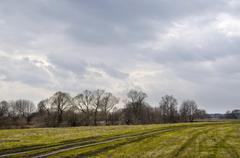 Spring landscape with the field and expensive Stock Photos