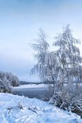 Winter landscape with trees, covered with hoarfrost and lake - stock photo
